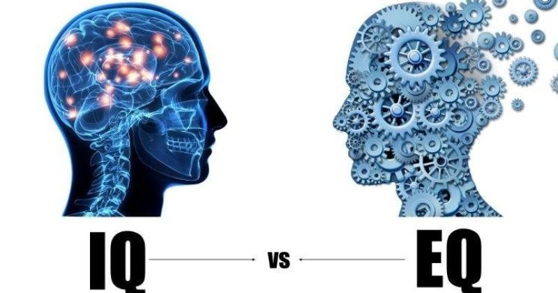 QUOZIENTE INTELLETTIVO (QI) VS QUOZIENTE EMOTIVO (QE): CHE TIPO DI INTELLIGENZA È PIÙ IMPORTANTE PER UN'AZIENDA?
