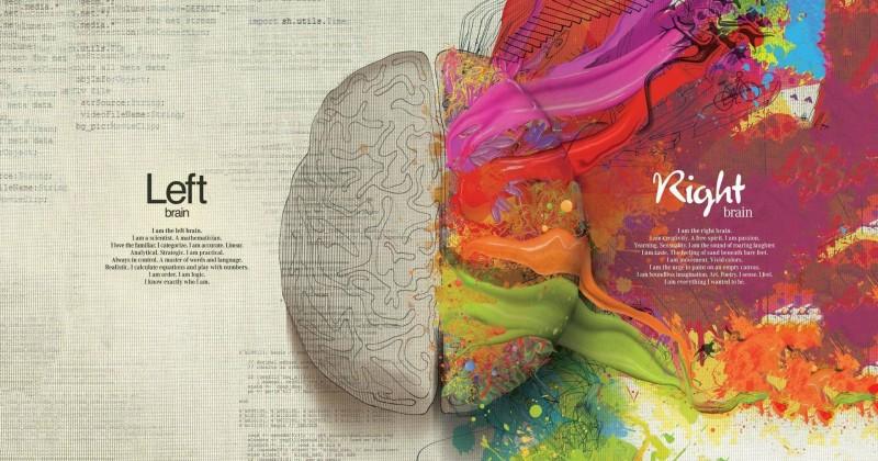 L'intelligenza emotiva: la nuova competenza per il successo