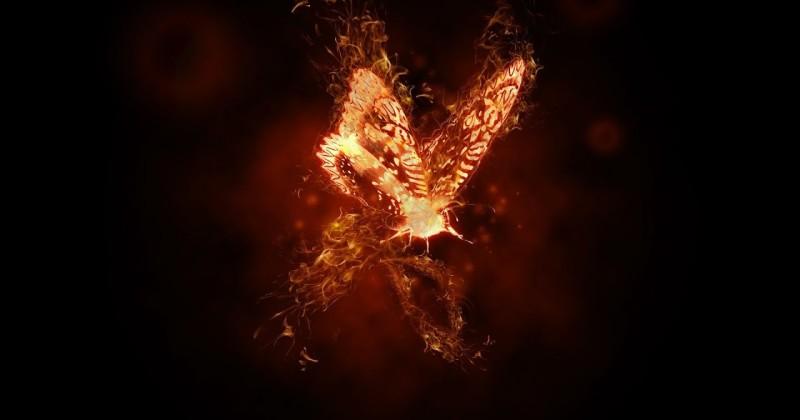 La metafora della farfalla in fiamme